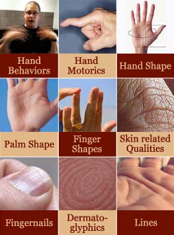 Multi-perspective palm reading: 9 minor levels.