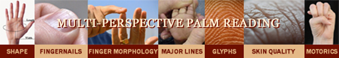 Multi-perspective palm reading.