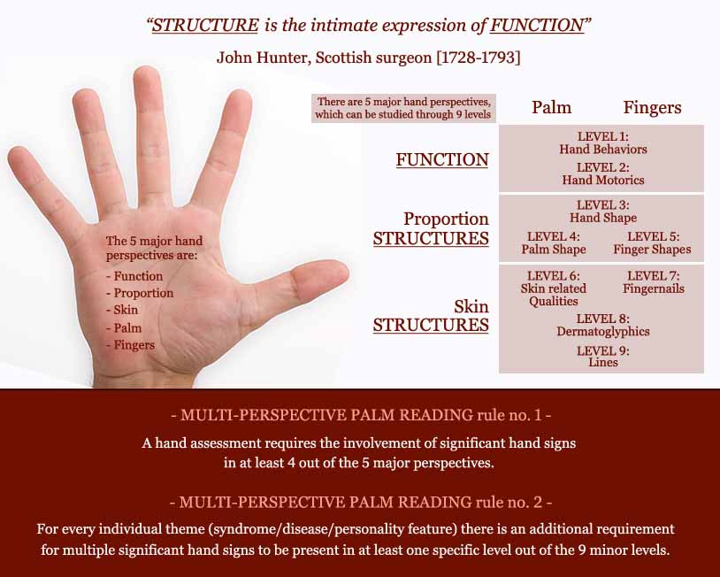 Discover Multi-Perspective Palm Reading! Multi-perspective-palm-reading-defined